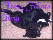 Feisty Felines Ring