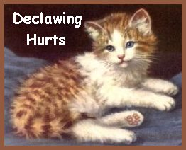 Declawing Hurts!