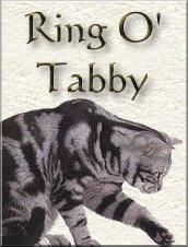 Ring O'Tabby